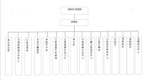 济南市口腔医院护理组织架构